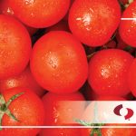 Getting Metal Out of Processed Vegetables - Magnetic Separation and Metal Detection-Bunting